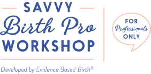 Savvy Birth Pro Workshop for Professionals